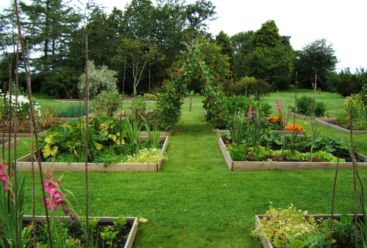 Vegetable, kitchen and wildlife areas
