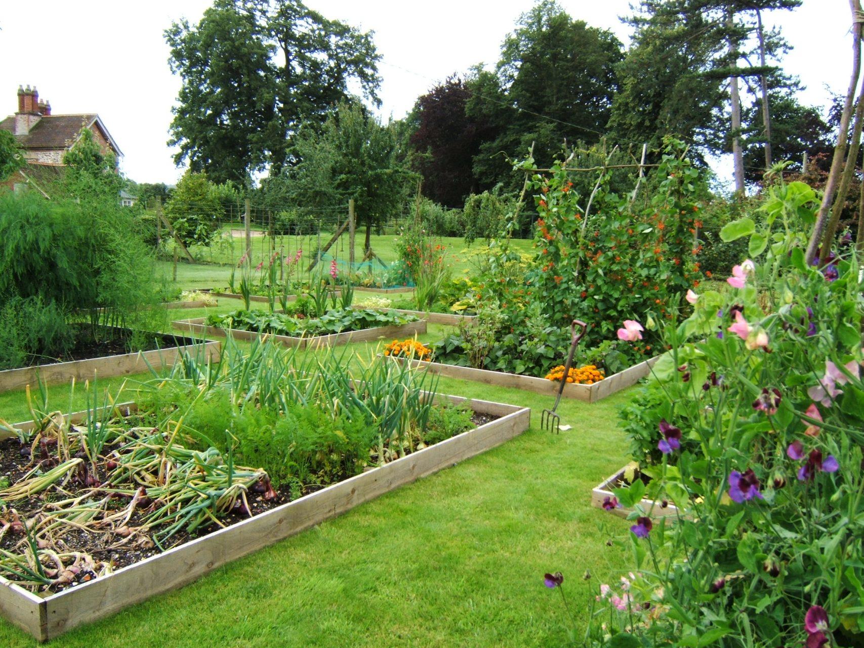 Kitchen Vegetable gardens Somerset melanie jackson