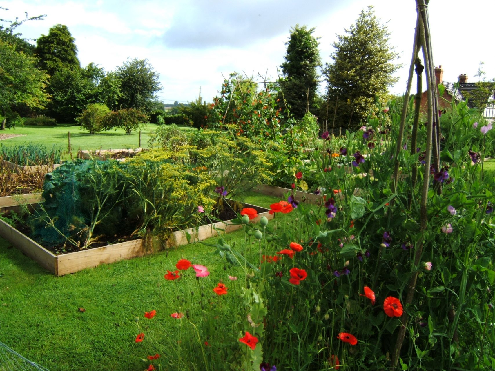 Bath veg garden