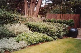 Formal Garden Design 03