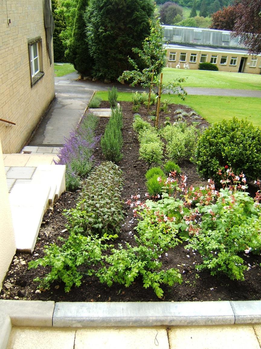 Bath School Garden Design 03