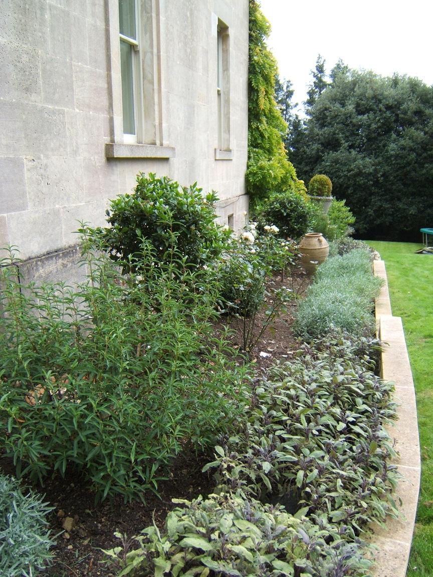 Bath Victorian Garden Design02